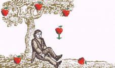¿Cómo llego a descubrir las leyes Isaac Newton?
