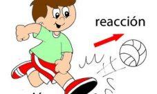 Leyes de Newton acción y reacción ejemplos